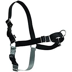 PetSafe Easy Walk Harness, Medium/Large, BLACK/SILVER for Dogs