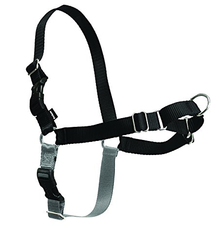 PetSafe Easy Walk Dog Harness, Medium, Black/Silver