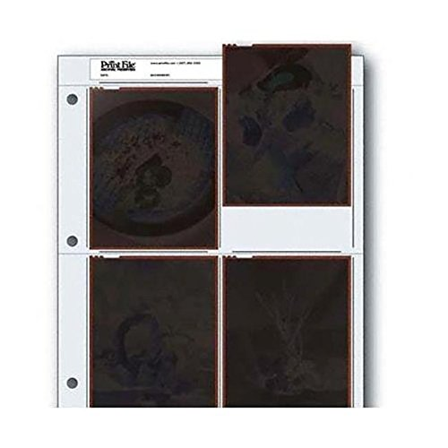 Vue-All Archival Safe-T-Binder with Rings, White with Archival Negative Pages Holds Four 4 x 5 Inches Negatives or Transparencies, Pack of 25 by Omega Brandess Distribution (Image #2)