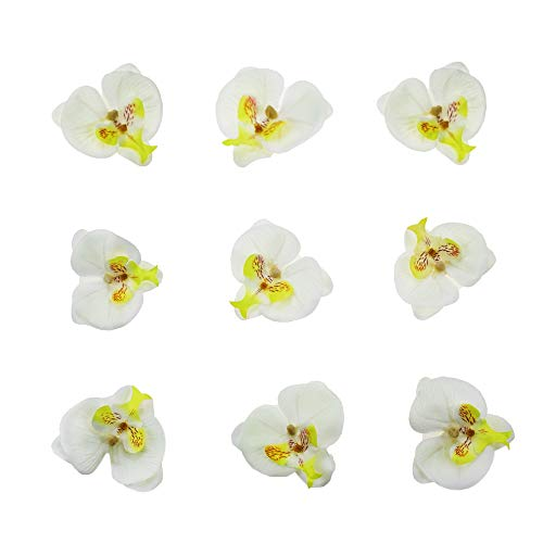 HZOnline Artificial Silk Phalaenopsis Flower Heads, Fake Butterfly Orchid Head Floral Bouquet for Crafts Wedding Decoration DIY Making Bridal Hair Clips Headbands Dress Photography Props (20pcs White) ()
