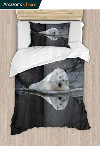 Temox Bear 2pcs Duvet Cover Sets, Sleeping Cute Polar Bear at The Zoo with Water Reflection Peaceful Calm Nature, Kids Bedding - Double Brushed Microfiber,39 W x 51 L Inches, Cream Grey Black