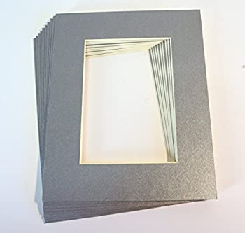 Pack of 10 SILVER 8x10 Picture Mats Matting with White Core Bevel Cut for 5x7 Pictures