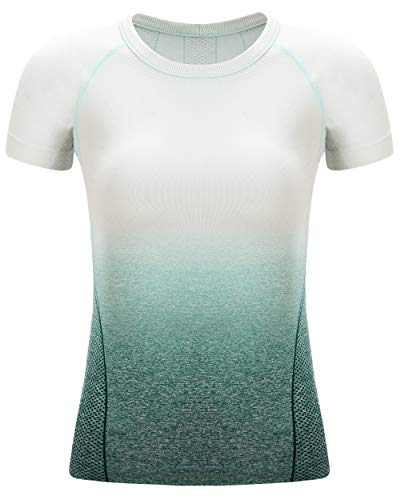 RUNNING GIRL Athletic Ombre Seamless T-Shirts for Women Crew Neck Stretchy Workout Running Yoga Tops Compression Short Sleeve Tees(Deep Teal/Ice Blue, S)