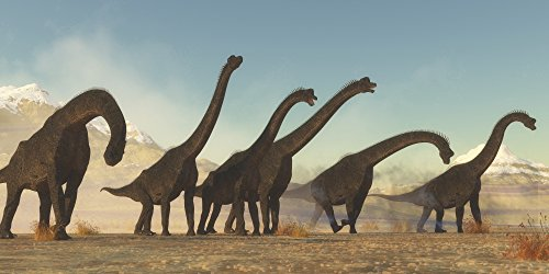 Brachiosaurus Poster - Posterazzi A Brachiosaurus Dinosaur Herd Moving Through a Dry Desert Area. Poster Print by Corey Ford/Stocktrek Images (20 x 10) Varies