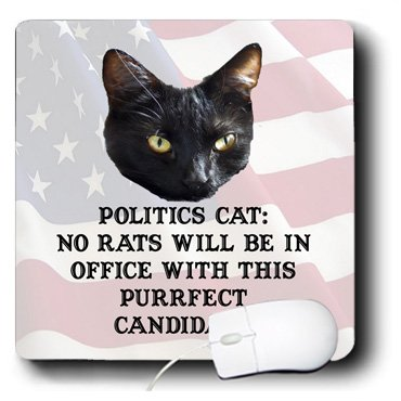 Sandy Mertens Politics and Election Pets - Politics Cat: No Rats Will Be In Office with This Purrfect Candidate. - MousePad (mp_56993_1)