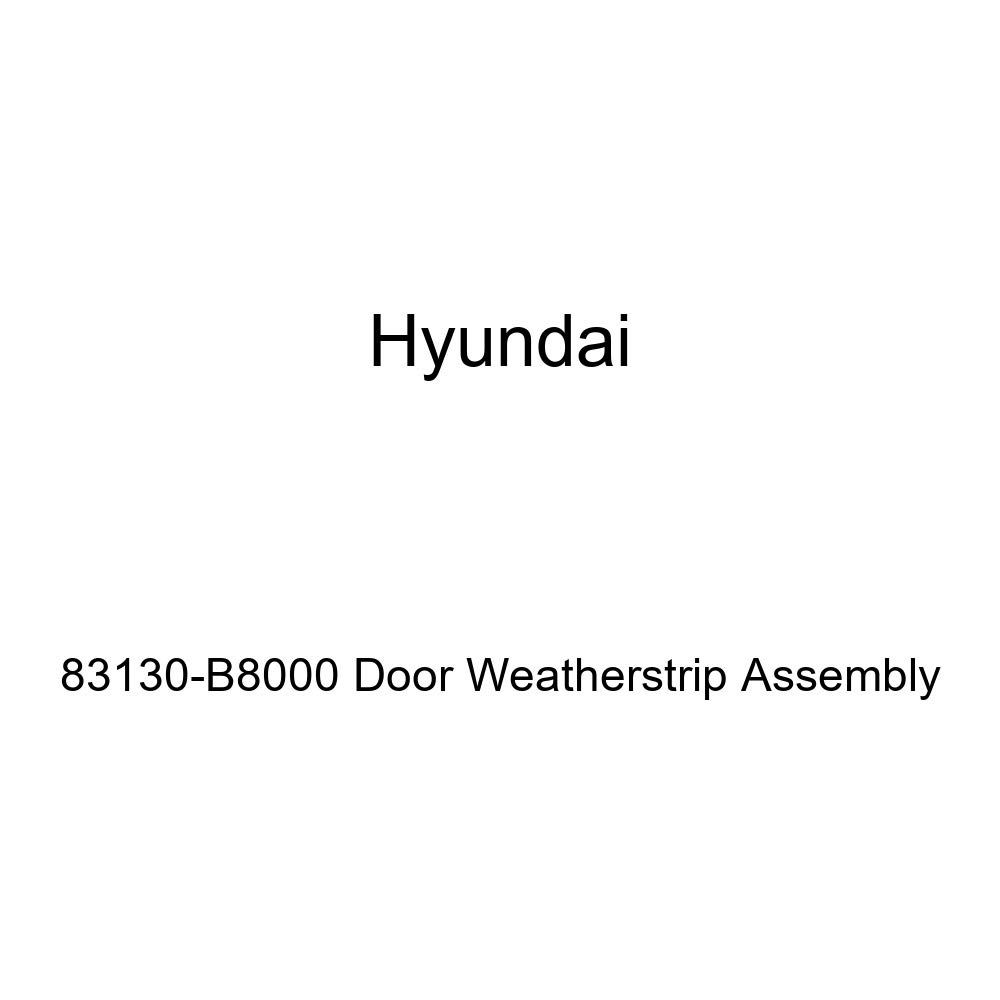 Genuine Hyundai 83130-B8000 Door Weatherstrip Assembly