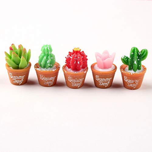 Slime charms 5Pcs Lot Plant Polymer Slime Charms Modeling Clay Accesorios Box Toy For 2