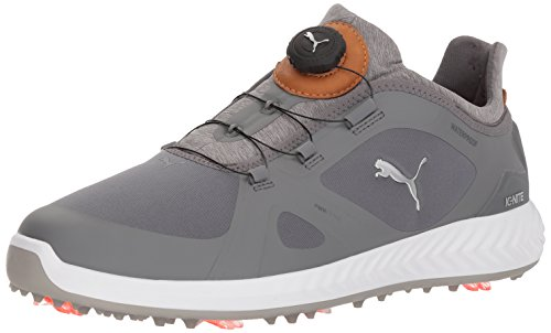 PUMA Golf Men's Ignite Pwradapt Disc Golf Shoe, Quiet Shade, 10 Medium US