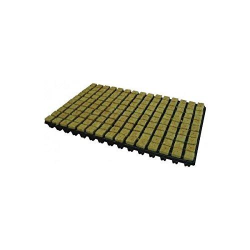 77 rockwool cubes propagation tray (1) GRODAN