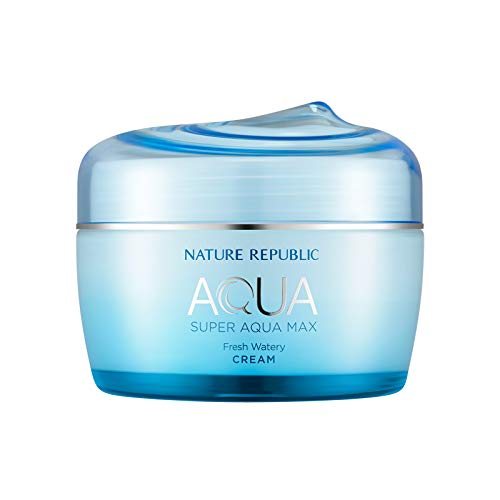 Nature Republic Super Aqua Max Fresh Watery Cream for Oily Skin, 80 Milliliter