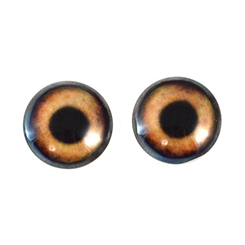 Cab Pendant Mount (20mm Brown Dog Glass Eyes Fantasy Taxidermy Art Doll Making or Jewelry Crafts Set of 2)