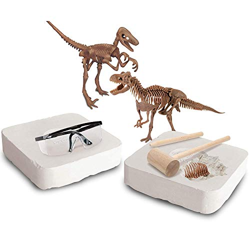Discovery MINDBLOWN Toy Dinosaur 3D Fossil Skeleton Excavation Kit, Includes 15 Pc T-Rex/10 Pc Velociraptor Replica Puzzle Bones, Tool Kit W/ Hammer, Chisel, and Brush, an Educational STEM Gift