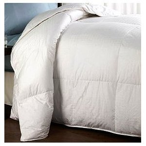 set anthologytm comforter scarlet in white twin xl