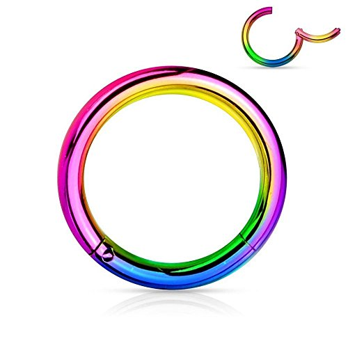 Covet Jewelry Titanium Anodized Precision 316L Surgical Steel Hinged Segment Ring (20GA, Length: 8mm, Rainbow) ()