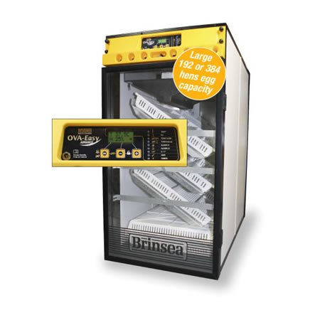 Used, Brinsea Ova-Easy 380 Cabinet Incubator for sale  Delivered anywhere in USA
