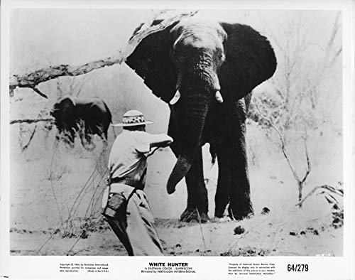 White Hunter original 1964 8x10 photo hunter aims at stampede elephants