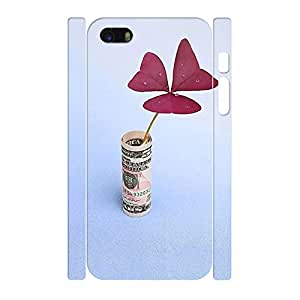 Wonderful Anti Proof Custom United States Dollar Series Pattern Cover Skin for Iphone 5 5s Case