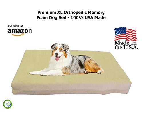 Back Support Systems Dog Bed, Top Dog, Memory Foam, X-Large, Khaki/Tan