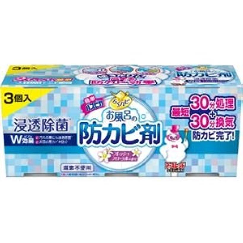 見る祈る破裂(まとめ)アース製薬 らくハピお風呂の防カビ剤フローラル3個パック 【×3点セット】