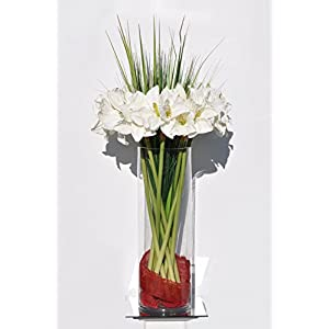 Huge White Amaryllis w/ Tall Grass & Ribbon Floral Arrangement 94