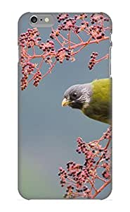 Animal Bird Case Compatible With Iphone 6 Plus/ Hot Protection Case(best Gift Choice For Lovers)