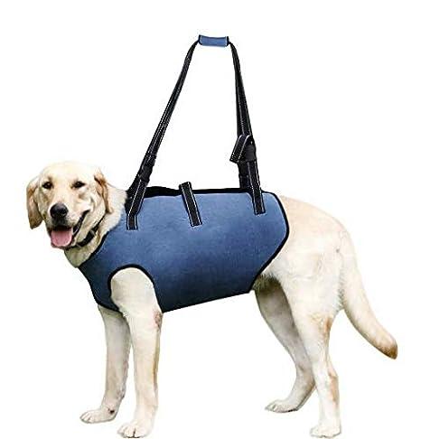 Hothuimin Arnés de elevación para perro, chaleco ajustable con ...