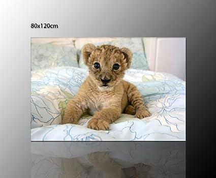 Dolce! cameretta bambini quadro leone baby giovane leone quadro