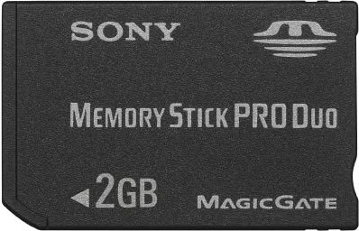 Sony Memory Stick Pro Duo 2GB Small Memoria Flash MS ...