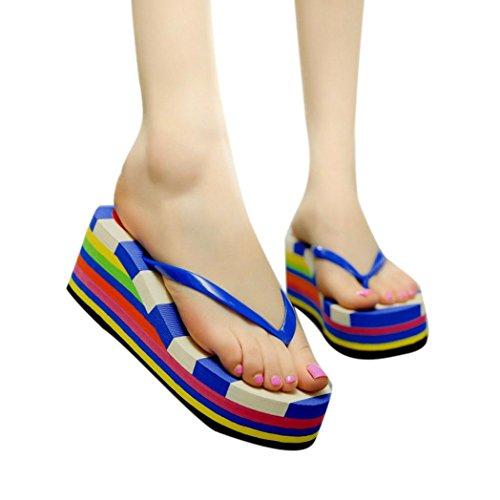 Ama (tm) Donna Zeppa Clip Toe Infradito Sandali Pantofole Mocassini Scarpe Da Spiaggia Blu