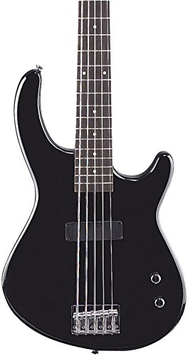 dean 5 string bass - 1