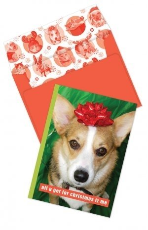 Yappy Holidays Christmas Boxed Cards (I Christmas Has Cheezburger)