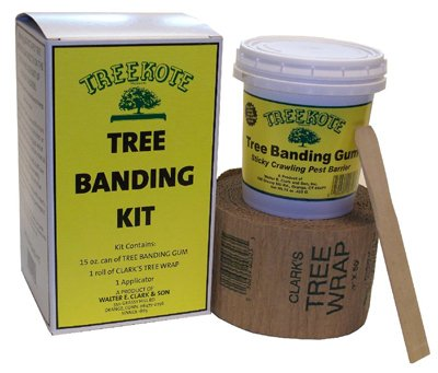 Eaton Brothers 300726 Tree Banding Gum Kit - Quantity 6 by Eaton Brothers