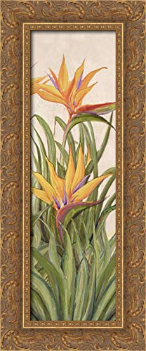 Bird of Paradise Panel I 11x24 Gold Ornate Wood Framed Canvas Art by Diannart