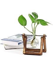 Ivolador Desktop Glass Planter Bulb Vase with Retro Solid Wooden Stand and Metal Swivel Holder for Hydroponics Plants Home Garden Wedding Decor (1 Bulb Vase)