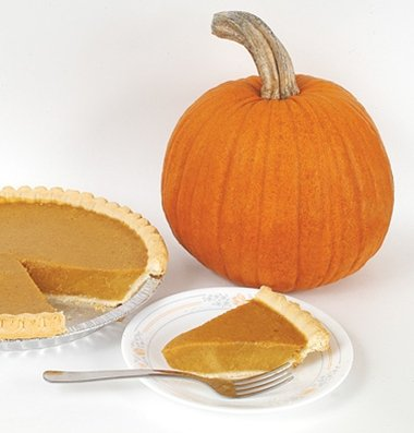 David's Garden Seeds Pumpkin New England Pie D592A (Orange) 25 Non-GMO, Organic, Heirloom Seeds ()