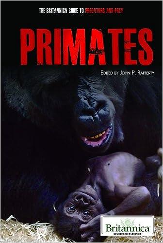 John P. Rafferty - Primates
