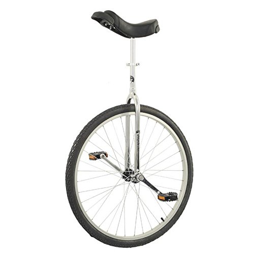 "Trainer 29"" Unicycle"