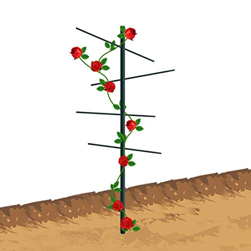 (EcoTrellis Garden Vine Trellis 2'H - FRP 3D Tower Type Trellis, Heavy-Duty Plants Support Ladder for Squash, Cucumbers and Fruiting)