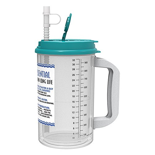 Straw Mug Cup - 32 Oz W.E. Insulated Cold Drink Mug with Teal Lid and straw cap