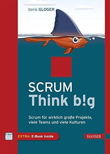Read Online Scrum Think big pdf epub
