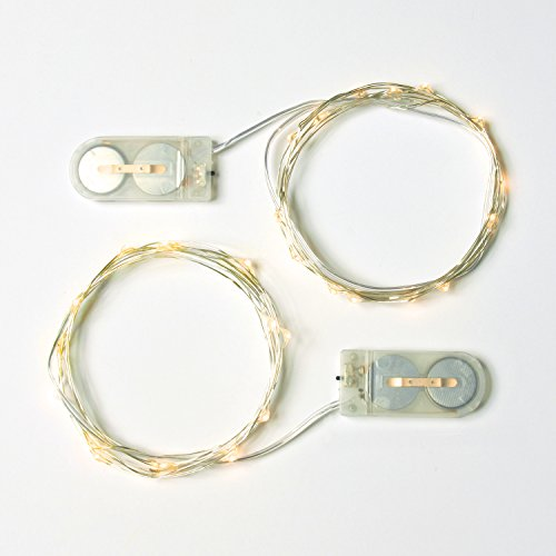 [RTGS 2 Sets 15 Warm White Color Micro LED String Lights Battery Operated on 6 Feet Silver Wire (1)] (Firefly Kids Costumes)