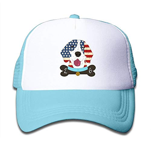 Boys&Girls Labrador Retriever American Flag No.1 Mesh Hat Summer Snapback Baseball Caps Adjustable Trucker Caps ()