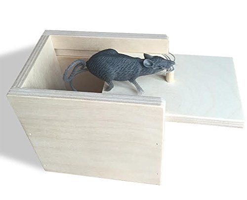 Wooden Surprise Box, Mouse, A Funny Practical Joke Toy by Artyea