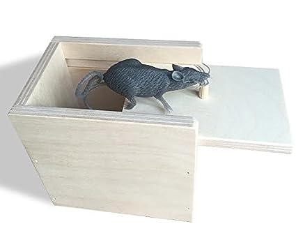amazon com wooden surprise box mouse a funny practical joke toy