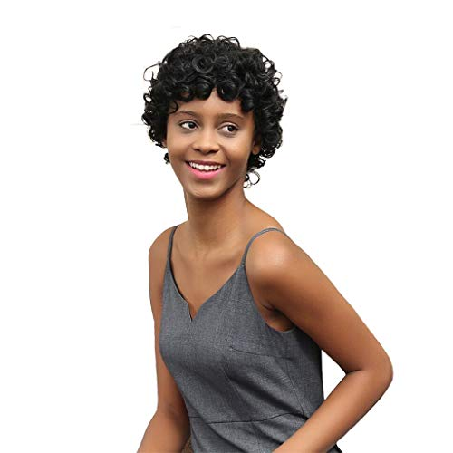 (FRCOLT Women's Short Black Brown Front Curly Hairstyle Synthetic Hair Wigs Short Curls Wig African Curly Hair (Size:19cm/7.5'', Short Black)