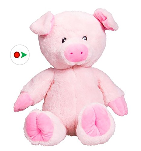 Stuffems Toy Shop Record Your Own Plush 16 inch Pink Pig - Ready 2 Love in a Few Easy Steps