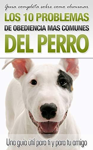 Obediencia del perro: Cómo eliminar los 10 problemas de obediencia más comunes del perro,
