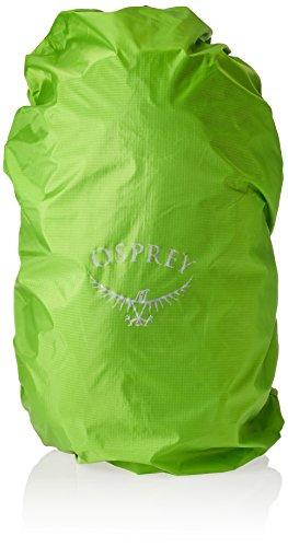 Osprey Packs Hikelite 18 Backpack, Aloe Green, One Size