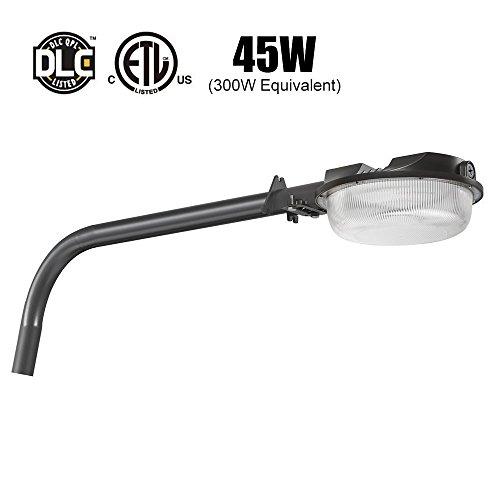 Long Arm Outdoor Wall Light