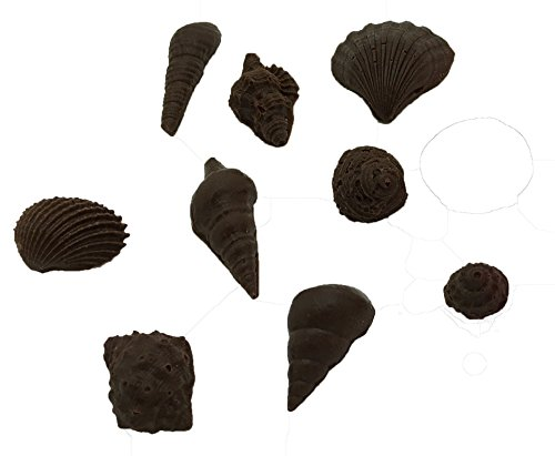 Okallo Products Silicone Seashell Mold MEGA 3 Pack - For Making Chocolate and Candy Sea Shells by Okallo Products (Image #7)